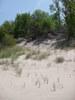 Indiana_Dunes_2009_16.JPG