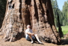 Me_and_sequoia_2012_2.JPG